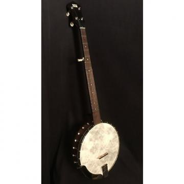 Custom Recording King RK-025-BR Old-Time Open Back Banjo 2017 Satin Finish, Hard Shell Case Included!
