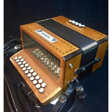 Custom Hohner  Morgane D to G Two Row Accordion w/Case
