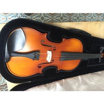 Custom gewa pure violin set 4/4 EW