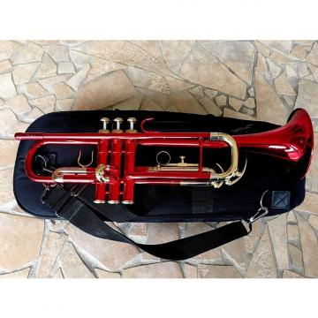 Custom Amati Trumpet TR 213 Red