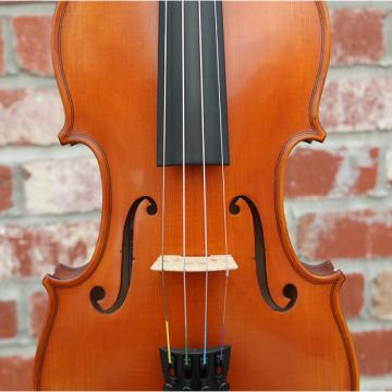 Custom Gliga Professional I 4/4 Full Size Violin Birdseye One-Piece Back