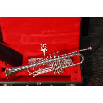 Custom Gretsch Capri  Silver
