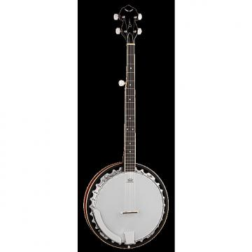 Custom DEAN Backwoods 3 5-string traditional resonator Banjo NEW