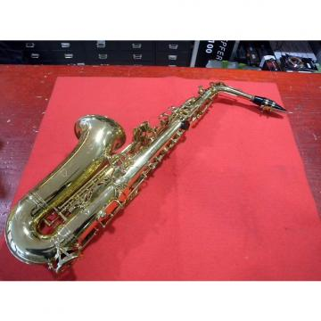 Custom Oqan OAS 615 Alto Saxophone