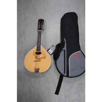 Custom Ozark Mandolin Including Soft Case