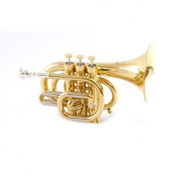 Custom Schiller CenterTone C Pocket Trumpet Gold