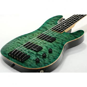 Custom Lipe Guitars Luparo P5