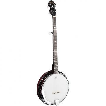 Custom Mitchell MBJ200 Deluxe 5-String Banjo