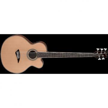 Custom Dean Acoustic/Electric Bass CAW 5 String - SN