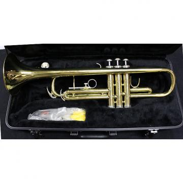 Custom Kersting 5747 Trumpet- See Shipping Rates Below