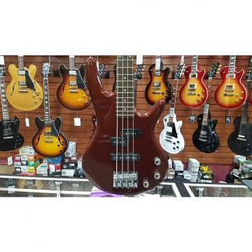 Custom GSRM20RBM Mikro Bass Root Beer Metallic