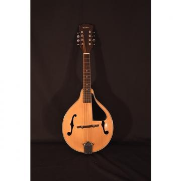 Custom Ventura Mandolin – Excellent Condition!