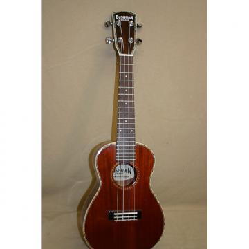 Custom Bushman Jenny solid mahogany ukulele 2016