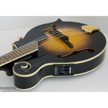 Custom Morgan Monroe MMS-9FE Electric Mandolin for repair