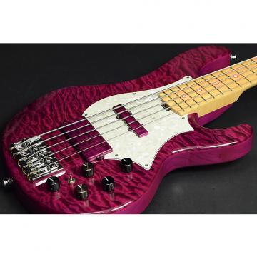 Custom ESP 20th L'Anniversary Bardic See Thru Purple