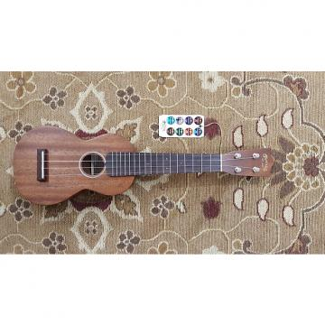 Custom Martin S1 Uke All Solid Mahogany Soprano Ukulele with Gig Bag and Professional Setup!