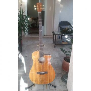 Custom Fender Victor Bailey Acoustic Bass Natural