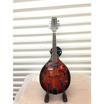 Custom SAMICK SM20E Electric/Acoustic Mandolin Early 90's