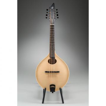 Custom Breedlove American 00 Matte Natural