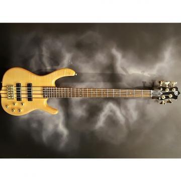Custom KSD Burner DLX 5 String Bass