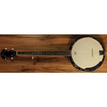 Custom Ibanez B50 5-String Banjo 2016