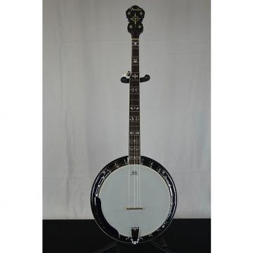 Custom Fender FB-55 5 String Banjo