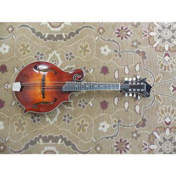 Custom 2016 Eastman MD615 F Style Acoustic Electric Mandolin with Hardshell Case and Professional Setup!