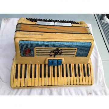 Custom Accordion Collectors Item: Borsini Gaviani Special 1950's ?