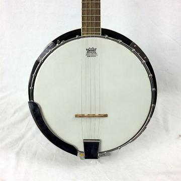 Custom Antares 5-String Banjo
