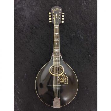 Custom Gibson A4 Mandolin - 1906