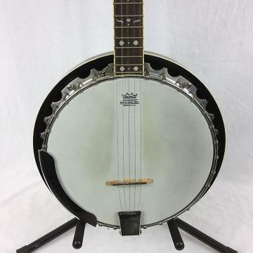 Custom Fender Concert Tone Banjo Series 5-string