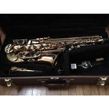 Custom Vespro Vespro Alto Saxophone