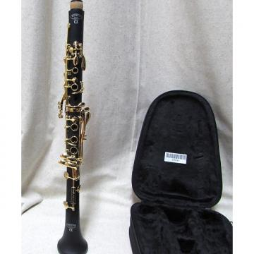 Custom Backun Alpha Bb Clarinet Gold Keys