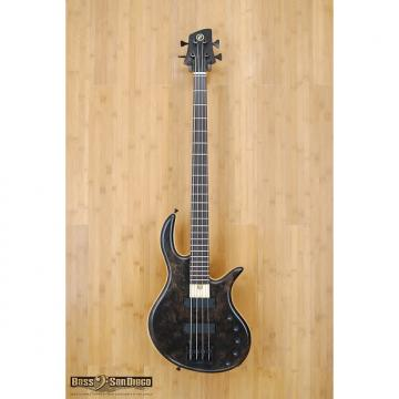Custom Elrick Gold Series e-Volution 4 String Bass Burled Redwood