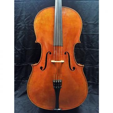 Custom Jonathan Li 503 Cello by Eastman Strings