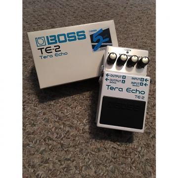 Custom Boss Te-2