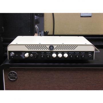 Custom Yamaha THR100H 100w Modeling Head