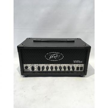 Custom Peavey 6505 MH Micro Head