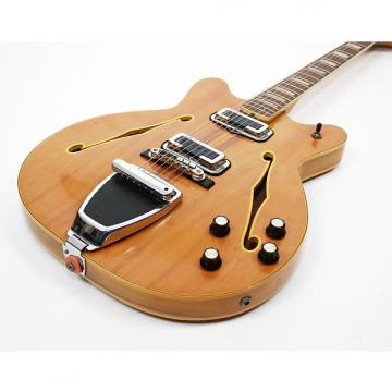 Custom Fender Coronado Wildwood 1967 Wildwood w/Case