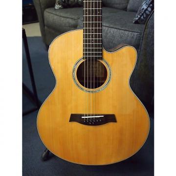 Custom Ibanez 8 String AEL108MD-NT Acoustic Electric Guitar