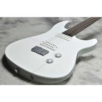 Custom Yamaha RGX-A2  White and Aircraft Gray
