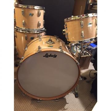 Custom Ludwig Early 70s Big Beat Kit