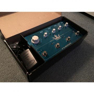 Custom TC Electronic Triple Flashback Delay