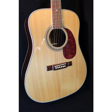 Custom Washburn D21S Dreadnought Acoustic