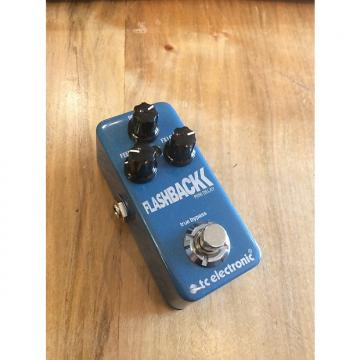 Custom TC Electronic Flashback Mini Delay
