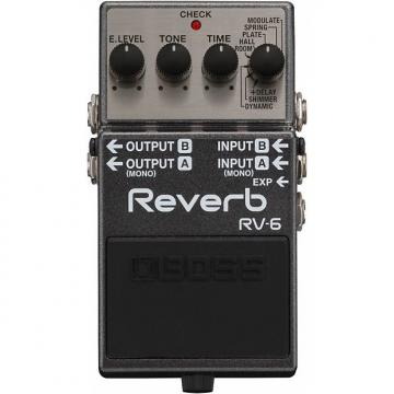 Custom BOSS RV-6 Reverb Pedal