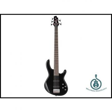 Custom Cort Action Bass Plus 5-String, JJ Pickup Set, 2-Band Eq, Lightweight, Black, Free Shipping