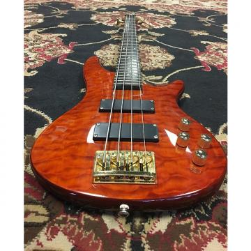 Custom Carlo Robelli 4-String Bass with a hard shell case