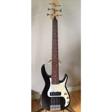 Custom Peavey Axcelerator 6-String Bass USA with Case
