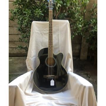 Custom Ibanez Bass Black